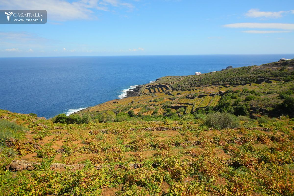 Pantelleria - Dammuso for sale