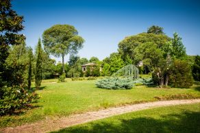 Asolo - Ancient villa with park for sale