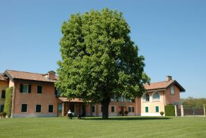 Asti - Villa for sale