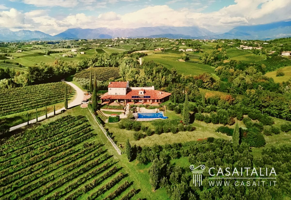 Villa with garden and swimming pool for sale in Conegliano Veneto