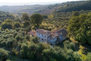 Country villa with olive grove and vineyard for sale in Umbria