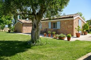 Farmhouse with outbuilding for sale in Le Marche